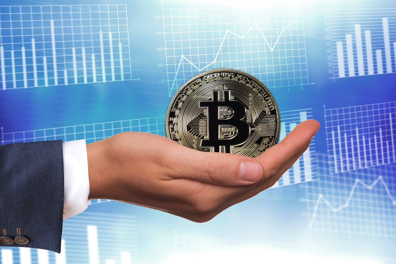 Cryptocurrency   Bear Market   Bull Market   Price Trends   Bitcoin
