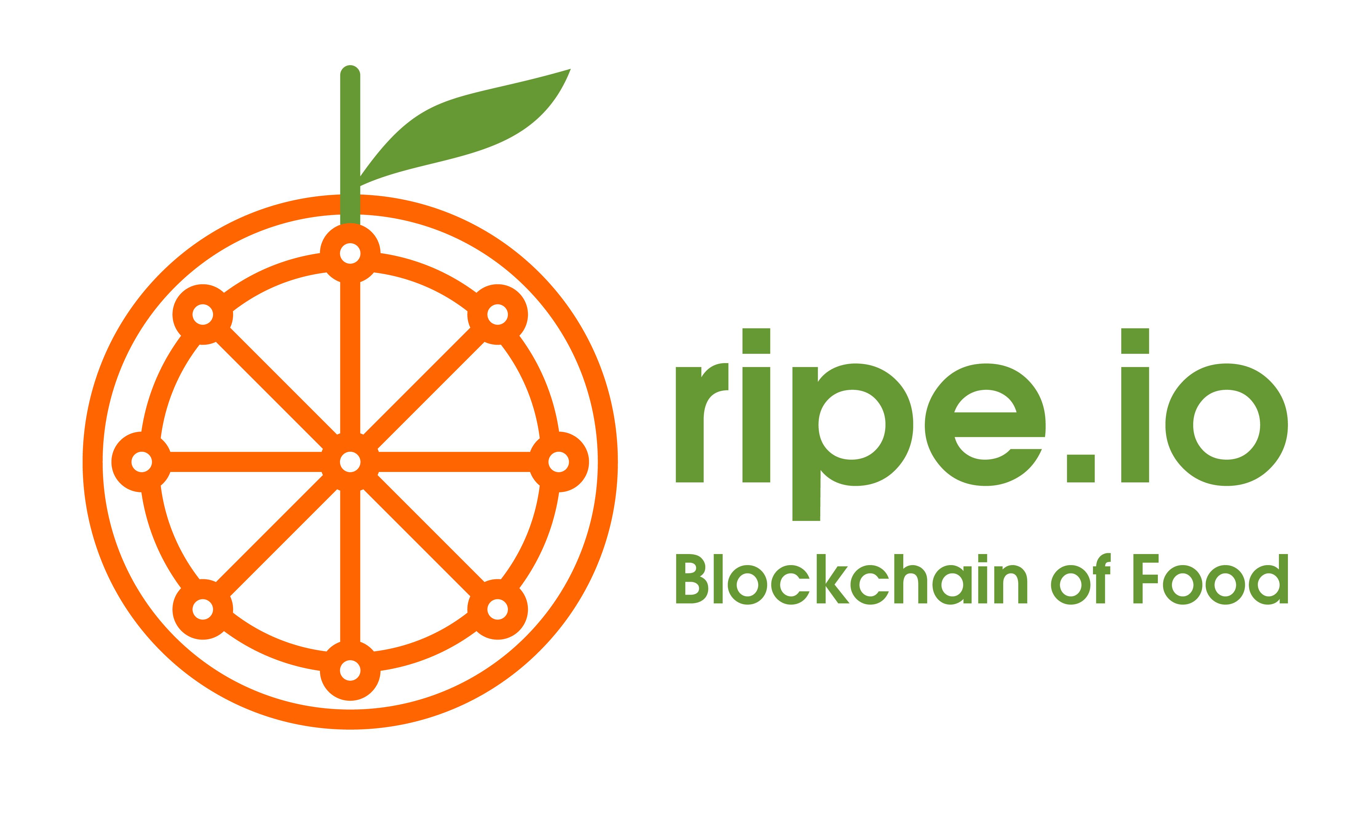 Blockchain Technology and Food Supply Chain