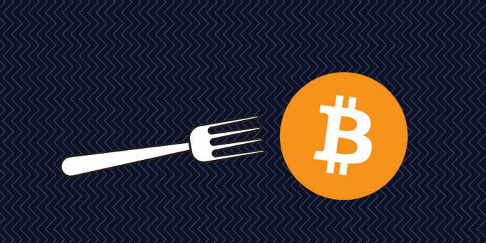 Bitcoin Cash Developers RevealsThe Date For The Hard Fork