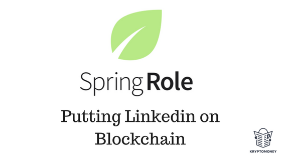 Interview With SpringRole Founder Kartik Mandaville
