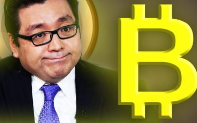 Tom Lee on Bitcoin : HODL ONN!!