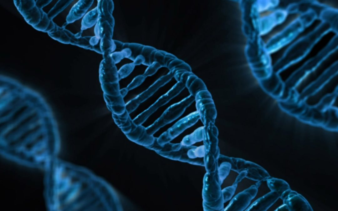 Blockchain in Science:Andhra Pradesh Government To Store DNA Database Of 50 Million People Via Blockchain Technology