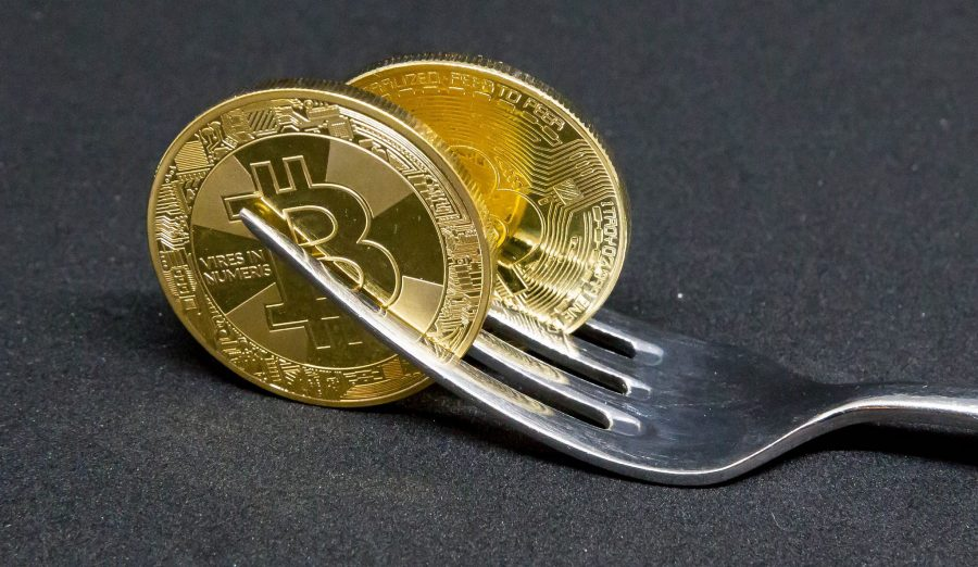 Things You Need to Know About The Upcoming Bitcoin Cash Hard Fork - Latest  Crypto News
