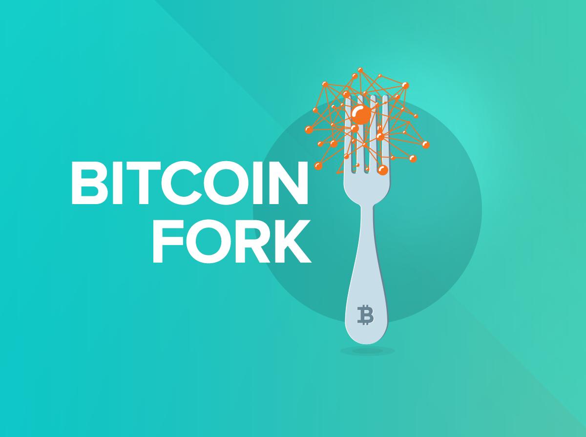 BitcoinZap   Upcoming Bitcoin Hard Fork   hard Fork   Bitcoin updates