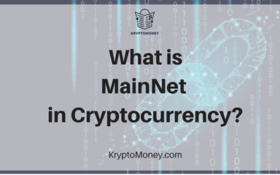 What is Mainnet in Cryptocurrency? | Cryptocurrency Mainnet Explained