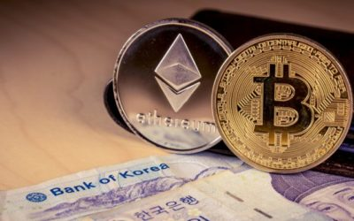 Bank of Korea Not in Support of Central Bank Issued Digital Currencies