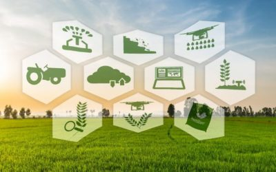 Blockchain in Agriculture: NITI Aayog to Implement Fertilizer Subsidy