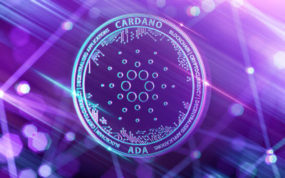Cardano Doubles Google Trend Volume After Coinbase Announces To List it
