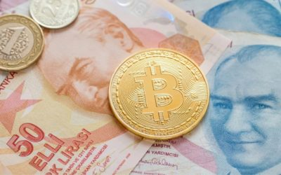 Bitcoin.org observes 42% traffic increase as Lira continues it's decent