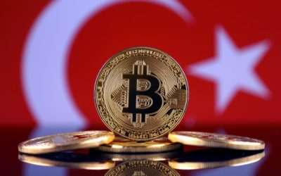Statista's New Survey Suggests Turkey Has Higher Cryptocurrency Ownership Than The U.S