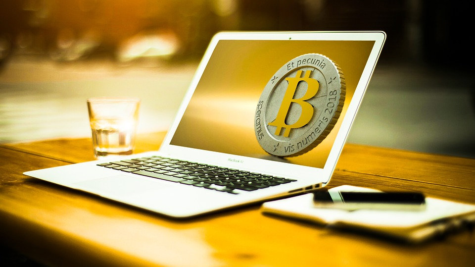 Bitcoin Knowledge | Bitcoin Adoption | Survey | Cryptocurrency