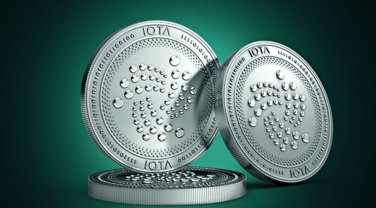 IOTA | Adoption | Founder | rise