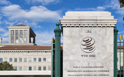 World Trade Organization Favors Ripple, Blockchain While Highlighting IOTA, Bitcoin And Ethereum