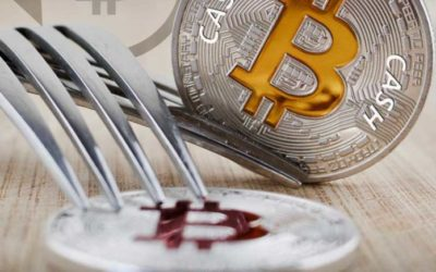 Bitcoin Cash Hard Fork Turns Out To Be A Personal War Between Roger Ver And Craig Wright