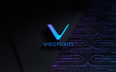 H&M Launches A Product Tracking Pilot Project By VeChain (VET)