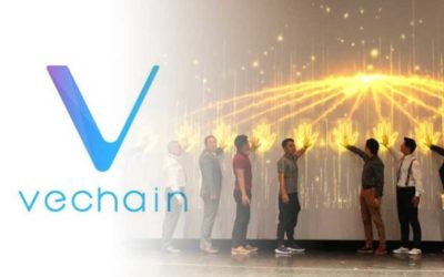 VeChain Showcased Multiple Blockchain Solutions At China International Import Expo