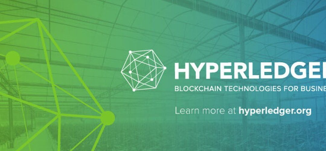 Hyperledger Fabric Observes 7-Fold Increase In Transaction Speed After Update